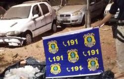 Grupo é presos com pescado irregular confessa que crime ocorreu em Paranaíta