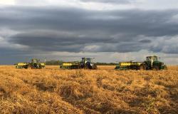 Gestão e assistência técnica levam fazenda a produzir mais de 100 sacas por hectare
