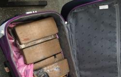 Rodoviária de Cuiabá: Mala com 13 tabletes de maconha é >esquecida> por passageira em ônibus