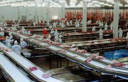 TRT mantém condenação e JBS de Juara deve pagar insalubridade a trabalhadores de 7 setores