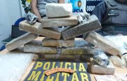 PM de Colíder apreende mais de 6 kg de maconha e cocaína