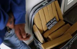 Adolescente receberia 4 mil para levar droga de Ponta Porã até Nova Mutum e Alta Floresta