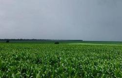 Norte de Mato Grosso com alerta de temporais nesta terça