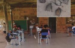 Infestação de morcegos obriga alunos deixar salas de aula em escola