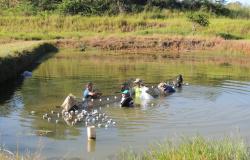 Projeto de Extensão em Piscicultura do IFMT - Campus Alta Floresta abre as inscrições para o evento de capacitação aos piscicultores