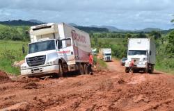Falta de logística é o principal problema enfrentado pelos pecuaristas da região noroeste de MT