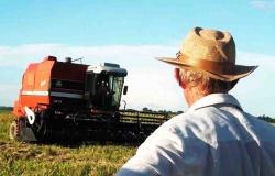 Agricultores de Nova Monte Verde comemoram a boa safra de arroz