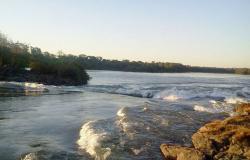 Morte de peixes no Rio Teles Pires em MT foi causada pelo baixo nível de oxigênio da água