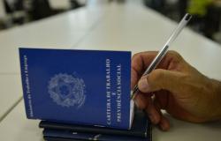 Mato Grosso foi o 3º maior empregador do País, em junho