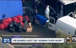 FBI encontra experimentos com corpos humanos em centro de doação de órgãos