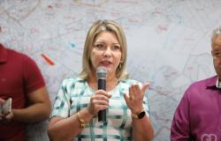 EM ARTIGO: Senadora defende Gaeco, ataca Judiciário e chama advogados de 'meliantes'