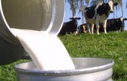 Mais de 130 mil agricultores serão beneficiados pelo Susaf