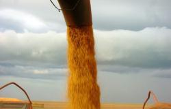 Aumento da safra não impacta no resultado de rentabilidade ao produtor de MT, avalia Aprosoja
