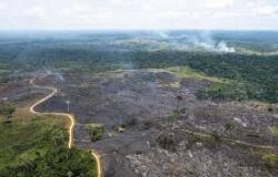 Crise Ambiental: >IPCC da Amazônia> vai mapear riscos da floresta