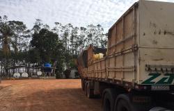 Quadrilha encapuzada invade fazenda, rende 80 funcionários e tenta roubar agrotóxico em MT