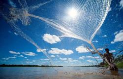 Período de pesca em Mato Grosso está suspenso até  31 de janeiro de 2020