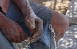 15 mil trabalhadores são resgatados da escravidão em 25 anos