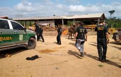 Operação Verde Brasil aplica R$ 94, 6 milhões em multas por irregularidades