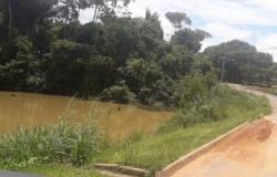 Onças são vistas em reserva ecológica no centro urbano de Alta Floresta