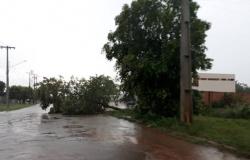 Fim de semana tem alerta de tempestade em Alta Floresta e 54 cidades de MT