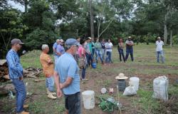 Alta Floresta: Técnicos do ICV realizam capacitação sobre sistemas agroflorestais para acadêmicos da Unemat