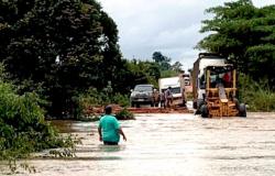 Restrições de caminhões em rodovia federal prejudicará setor produtivo em MT, diz presidente