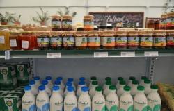 Setor de orgânicos fatura R$ 4,6 bi em 2019; alta anual foi de 15%