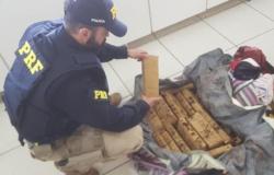 Coxim MS: PRF apreende 42 kg de maconha em ônibus que seguia para Alta Floresta