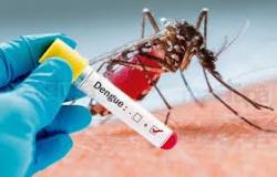 Em seis semanas, dengue aumenta 128% em MT