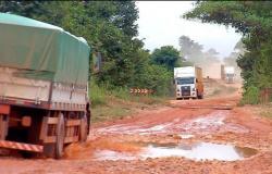 Caos na BR-174: mais de 60 mil litros de leite são jogados fora por falta de transporte