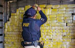 PRF apreende mais de 6,5 toneladas de drogas nas rodovias federais que cortam o Distrito Federal e Goiás