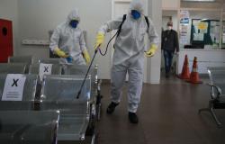Pesquisadores da Austrália descobrem remédio que mata novo coronavírus em 48 horas