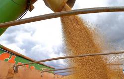 Exportação de soja de MT atinge recorde em abril, diz Imea