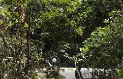 Polícia Civil cumpre prisão de um dos envolvidos no furto de aeronave em Matupá