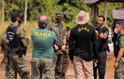 Tropas do Exército apreendem madeiras ilegais e entorpecentes em operação na região Norte de MT