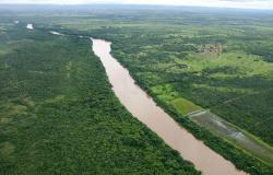 Comitês de Bacia Hidrográfica utilizam a tecnologia em favor da conservação