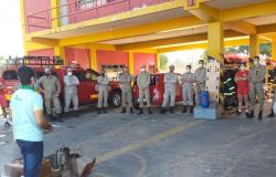 Militares da 7ª CIBM passam por capacitação sobre manejo de abelhas