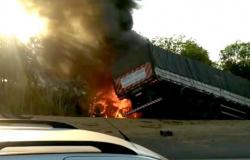 BR-163: Motorista morre e mulher fica ferida após carreta bater de frente com caminhonete