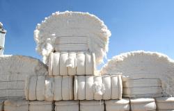 Sete municípios de MT movimentam R$ 9,7 bilhões no agronegócio; Estado investe em obras