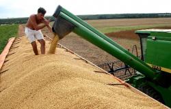 Soja, milho e algodão mantêm MT na liderança da produção nacional pela 9ª vez