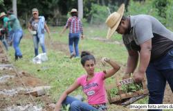Alta Floresta: Projeto usa sistemas agroflorestais para restaurar APPs em pequenas propriedades