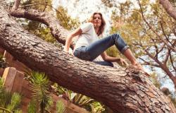 Para comemorar 40 anos, Gisele Bündchen quer plantar 40 mil árvores em Mato Grosso