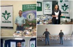 Sindicatos rurais de MT distribuem cestas básicas para famílias em situação de vulnerabilidade