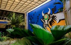 MPF recomenda que Mato Grosso tenha mais transparência na divulgação dos gastos para enfrentamento da covid-19