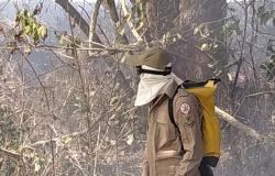Mais de 250 focos de calor são registrados em Nova Monte Verde