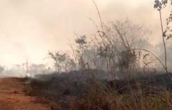 Bombeiros combatem queimada em área de vegetação próxima ao aeroporto em Alta Floresta
