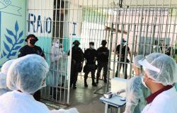 MT - Trabalho para evitar proliferação da Covid-19 em presídios é destacado por membros do Sistema Penitenciário