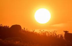 Mato Grosso passa dos 41°C