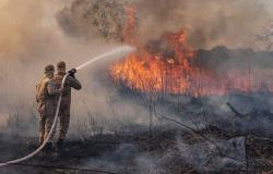 Governo pode aplicar multa de até R$ 50 milhões por fogo no Pantanal