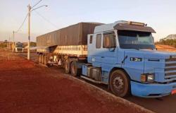 Carretas de Alta Floresta e Nova Monte Verde são apreendidas com madeira ilegal em MS